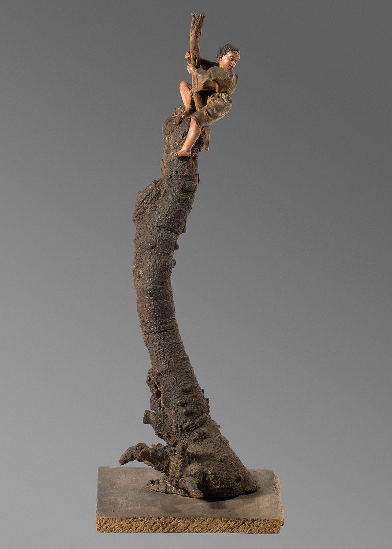 Niño arriba de un árbol, Ramon Amadeu