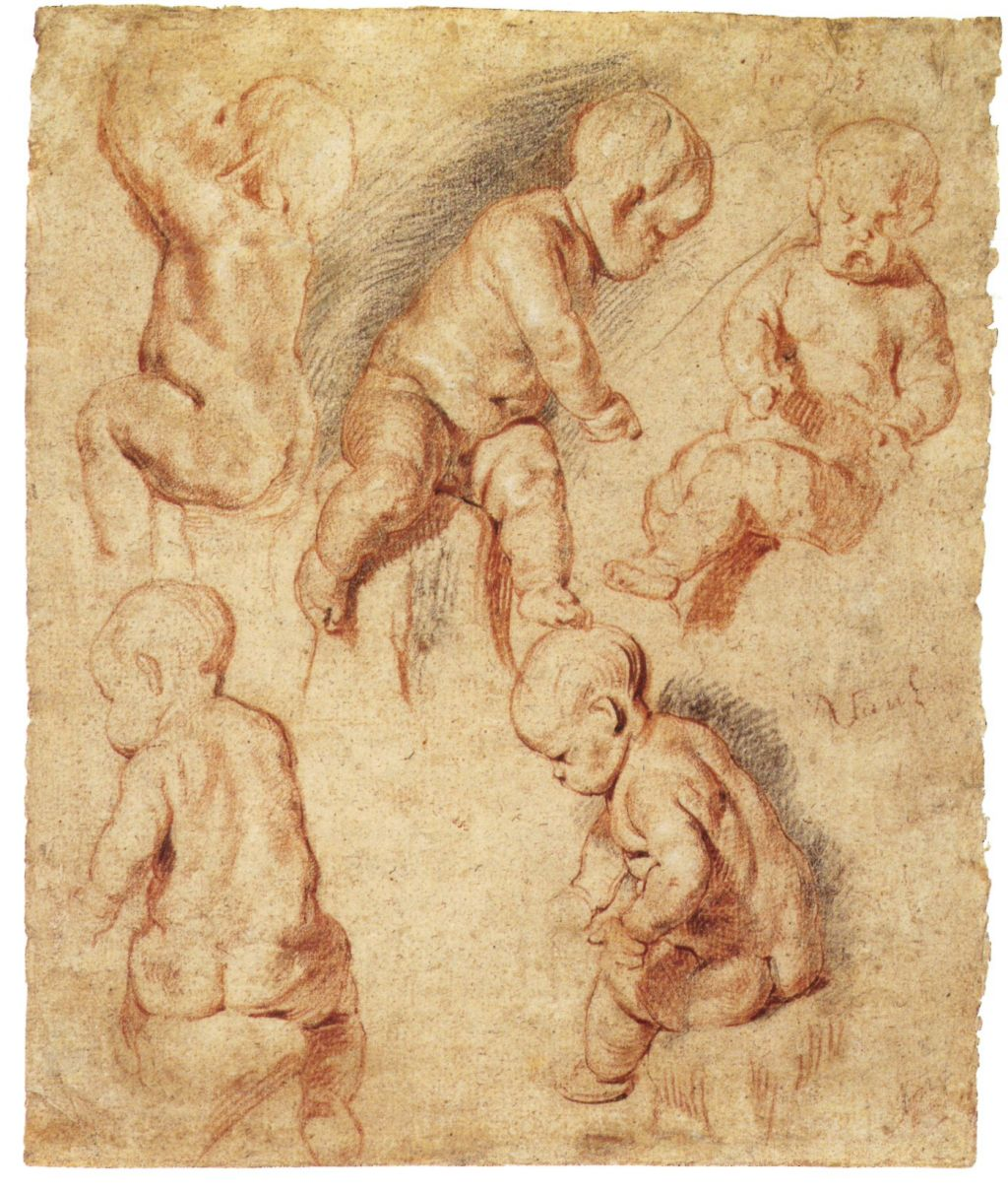 Estudi de putti, Jacob Jordaens