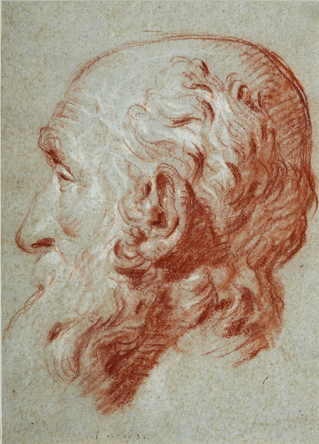 Head of Giulio Contarini, after a bust of Alessandro Vittoria, Giovanni Battista Tiepolo