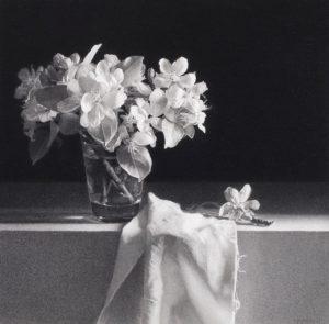 Pere-Santilari-vaso-flores-manzana