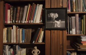 Santilari-Biblioteca-Artur-Ramon-Art